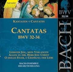 Cantatas Vol.11 (BWV 32/33/34)