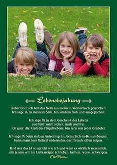 Postkarten: Lebensbejahung, 12 Stück