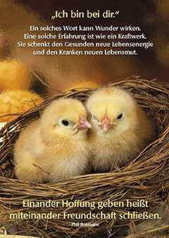 Postkarten Ich Bin Bei Dir 12 Stück Phil Bosmans Sendbuchde