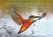 Postkarten: Gott erfrische dich, 12 Stück